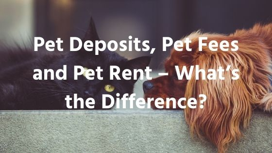 Pet Deposits, Pet Fees and Pet Rent – What's the Difference